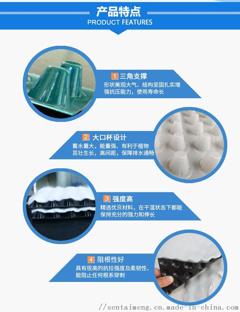 排水板 (4).jpg