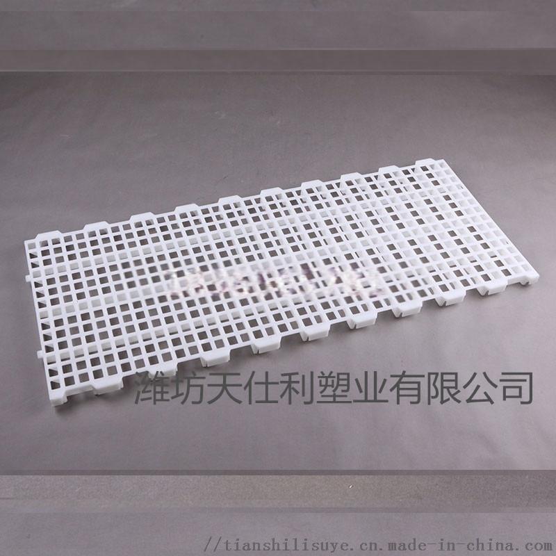 鸡用地板 塑料漏粪板型号 漏粪板厂家896907485