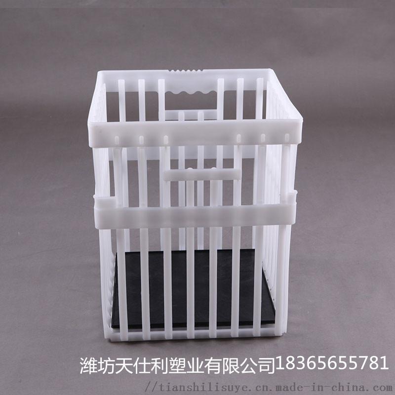 塑料大种蛋箱 种蛋周转箱  禽蛋专用箱897679365