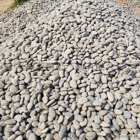 灰色鹅卵石5-8公分