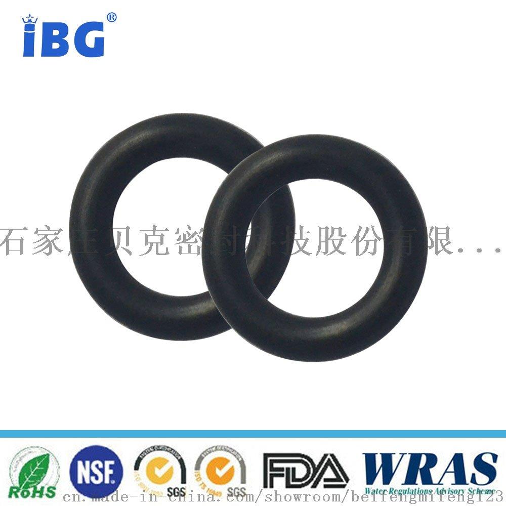 N9000506-O-ring丁腈90黑色2
