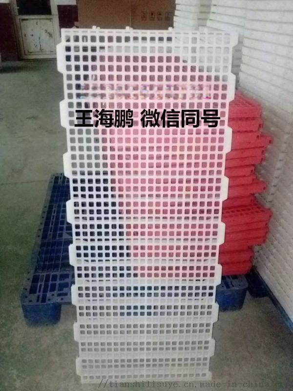 雞用漏糞板供應廠家 雞用塑料漏糞板報價837320332