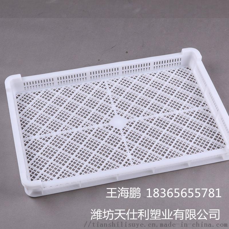 厂家直销塑料烘干盘 新疆大枣烘干盘 干果烘烤盘113243592