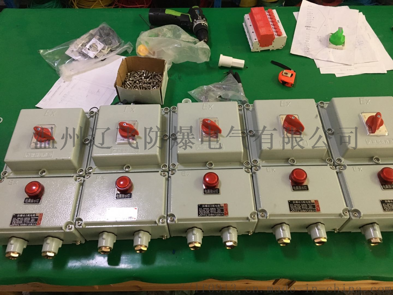 BLK52-60/3防爆断路器770013132