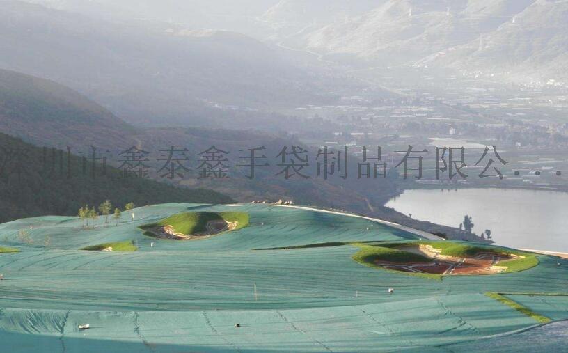 绿化布3.jpg