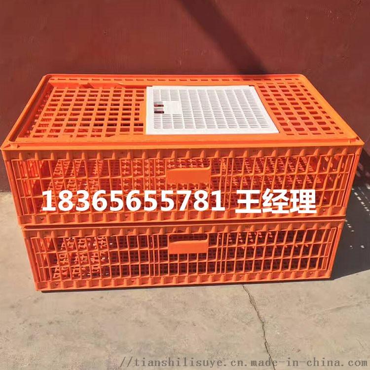山东天仕利供应塑料大鸡笼子 装鸭用塑料笼子112865182