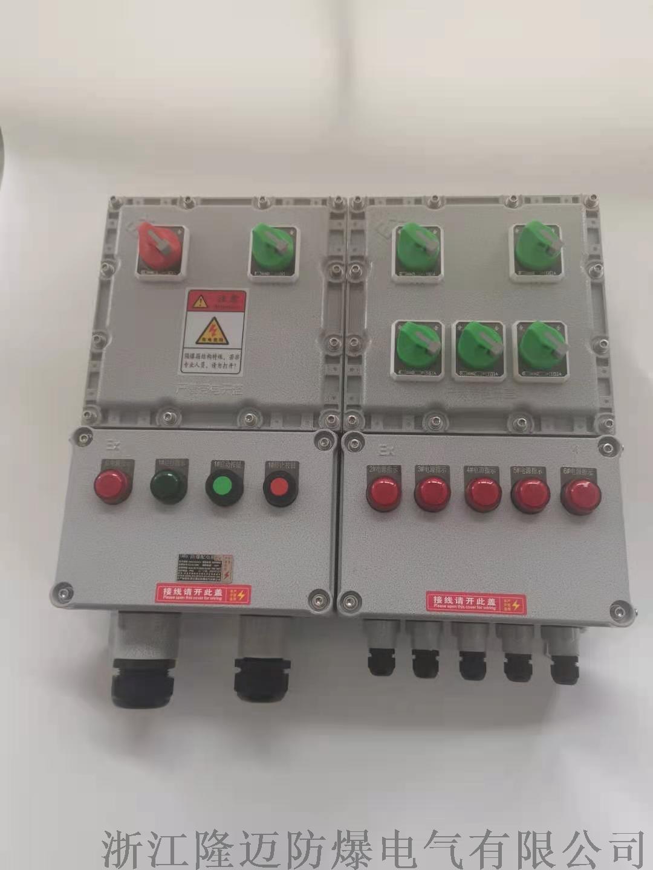 防爆动力配电箱ExdⅡCT4-铝合金(带防雨罩)953040775