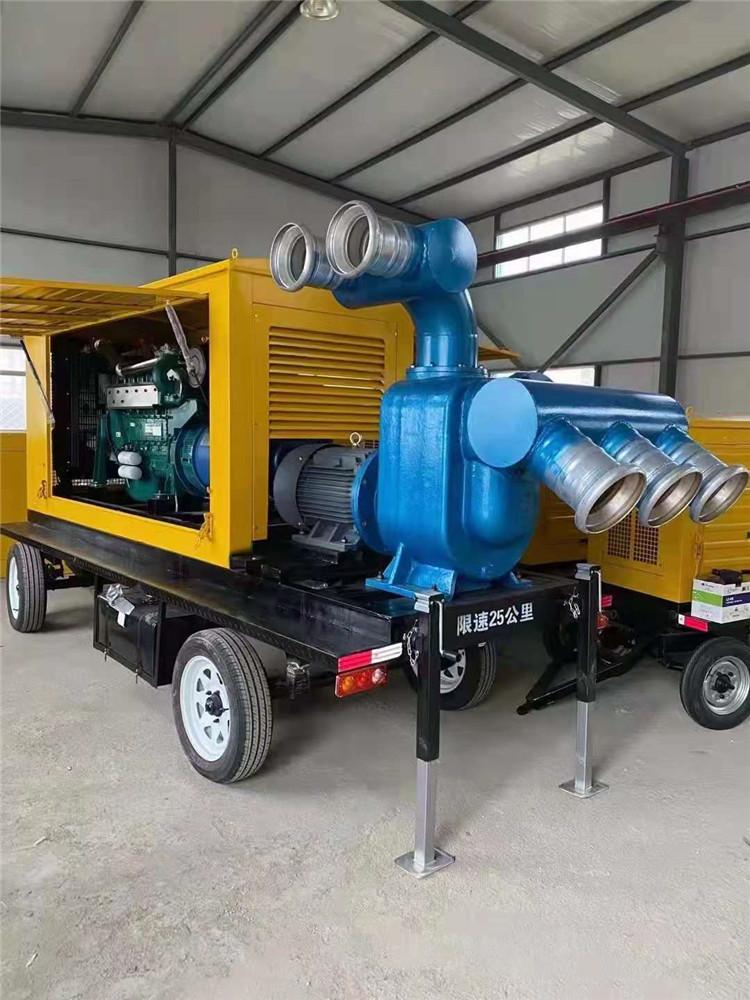 防水防洪8寸柴油自吸水泵140039732
