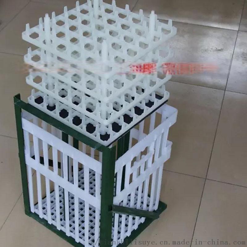 种蛋周转箱 塑料鸭种蛋箱 厂家供应种蛋周转箱134525505