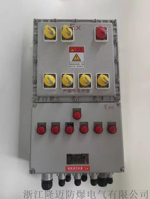 防爆动力配电箱ExdⅡCT4-铝合金(带防雨罩)953040795