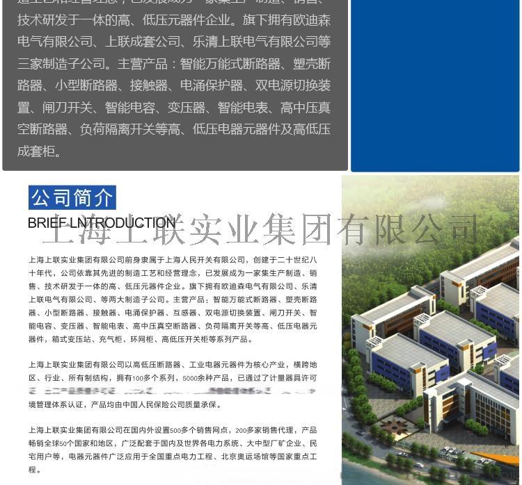 上海上联人民开关RMW1-2000框架智能断路器88081095