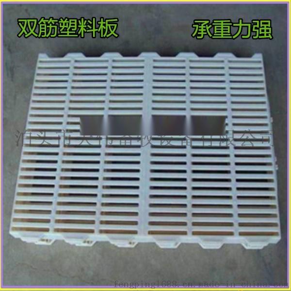 山东现代化新型养猪使用小猪保育床有哪些优点保育床多少钱一套758828155