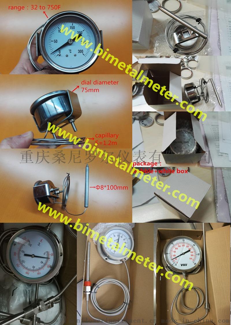 capillary thermometer (5).jpg