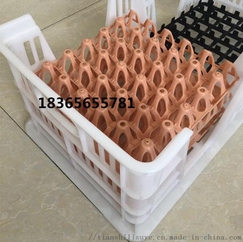 新式种蛋筐 塑料种蛋筐 可配蛋托用蛋筐841086152