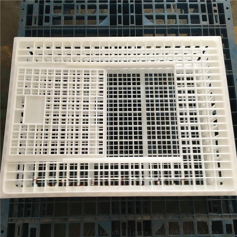 山东天仕利供应塑料大鸡笼子 装鸭用塑料笼子112864712
