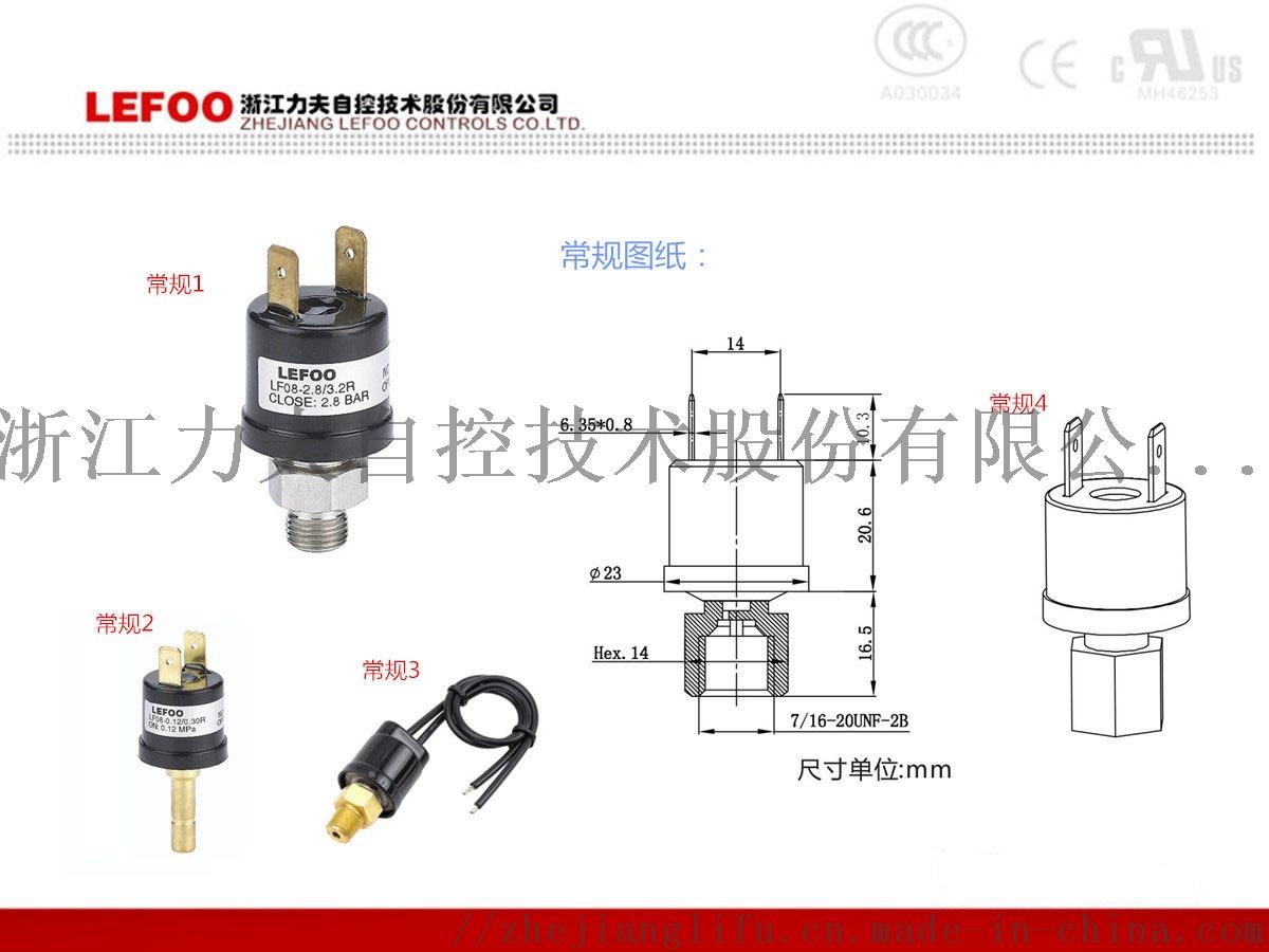小型多用途压力开关 高低压控制等压力检测控制99023905