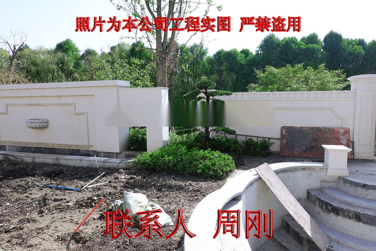 苏州造型罗汉松 造型雪松 造型五针松 造型景观树899738605