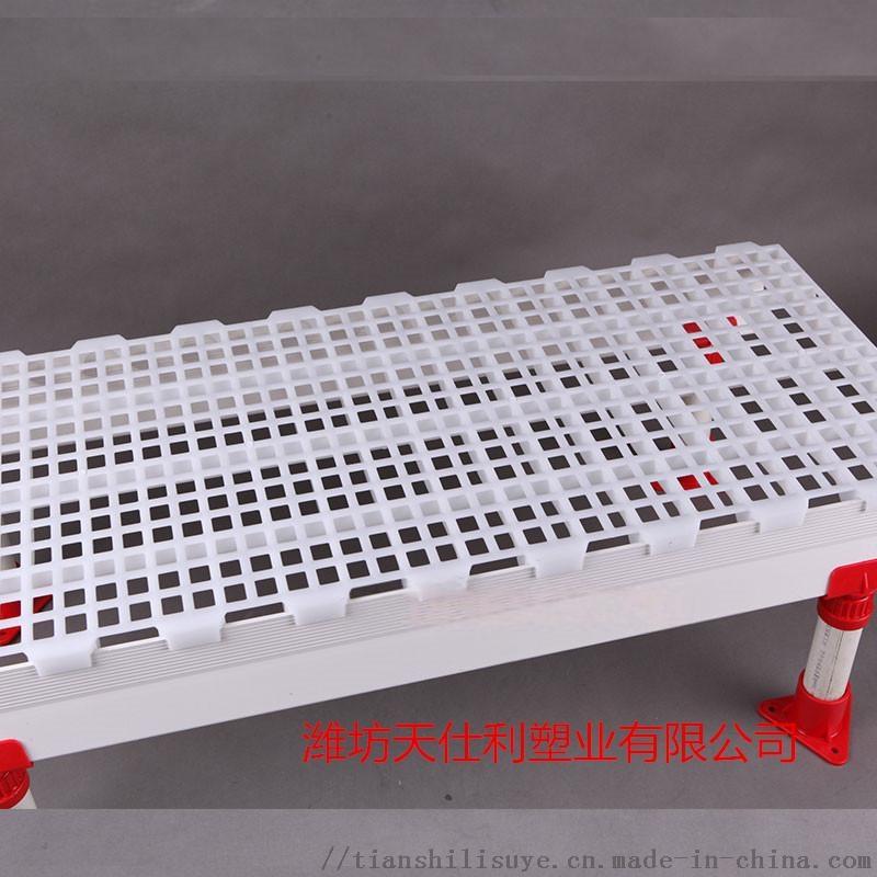 鸡用漏粪板供应厂家 鸡用塑料漏粪板报价837320322