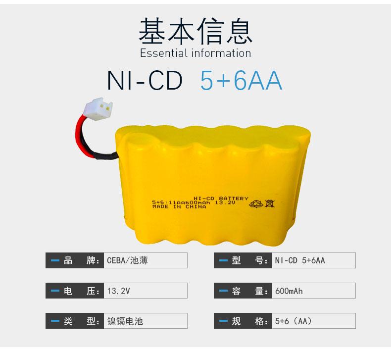 NICD5+6AA_03.jpg