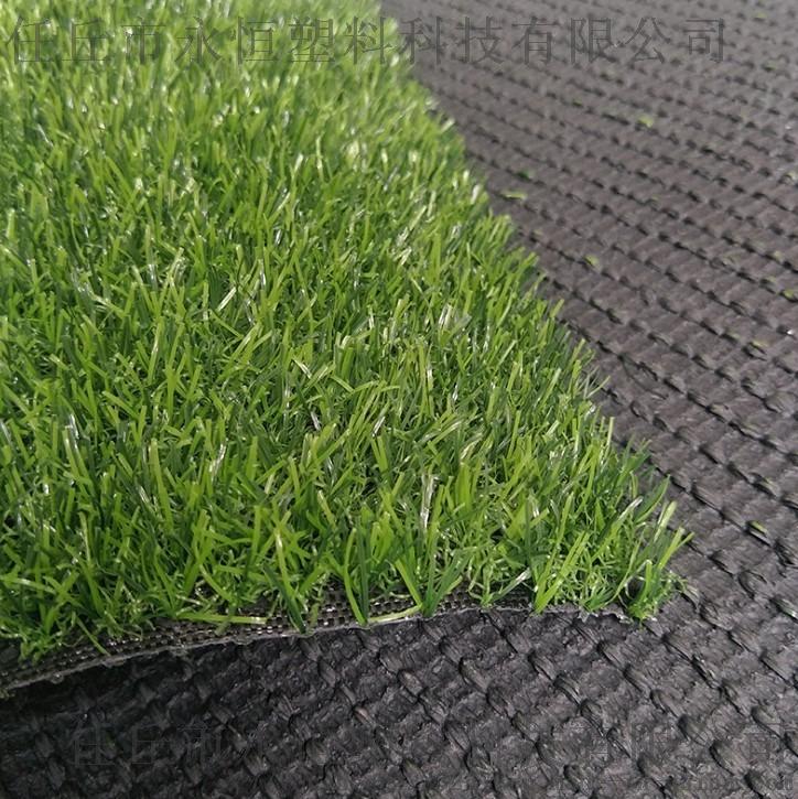 休闲草坪 两公分春草幼儿园地毯 环保绿色61615342