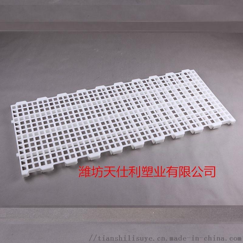 鸡用漏粪板供应厂家 鸡用塑料漏粪板报价837320292