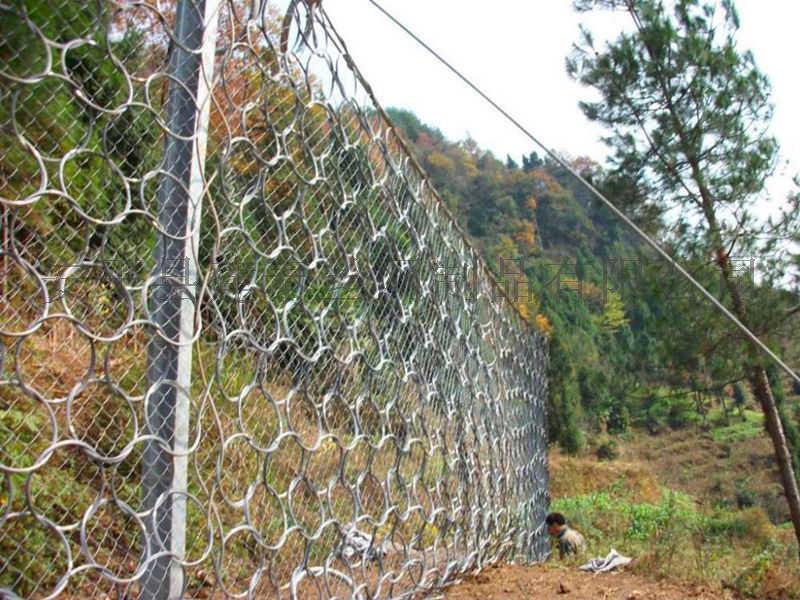 甘肃rxi200被动防护网 环形防护网140759525