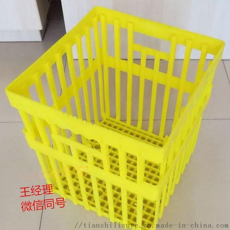 塑料大种蛋箱 种蛋周转箱  禽蛋专用箱897679345