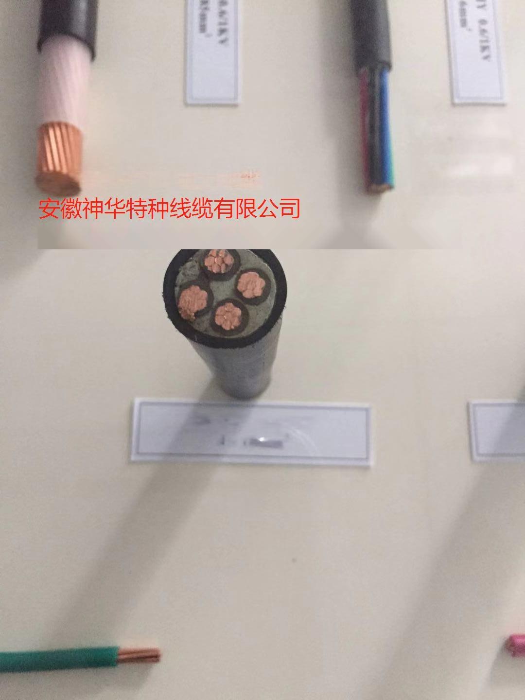 YJV-2*1.5 电力电缆65976802