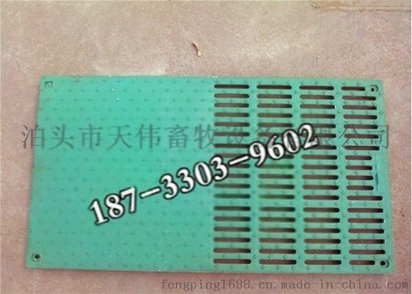 河北加厚加重优质漏粪板复合地板天伟畜牧厂家批发758753295