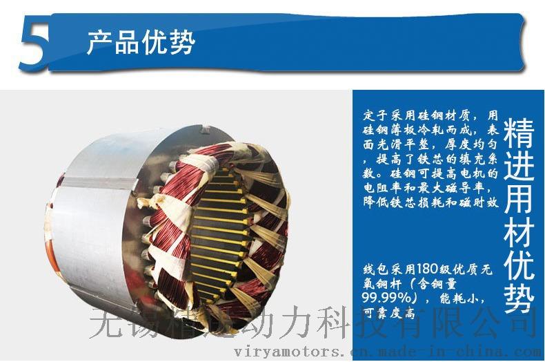造雪机专用驱动电机 Virya品牌67281905