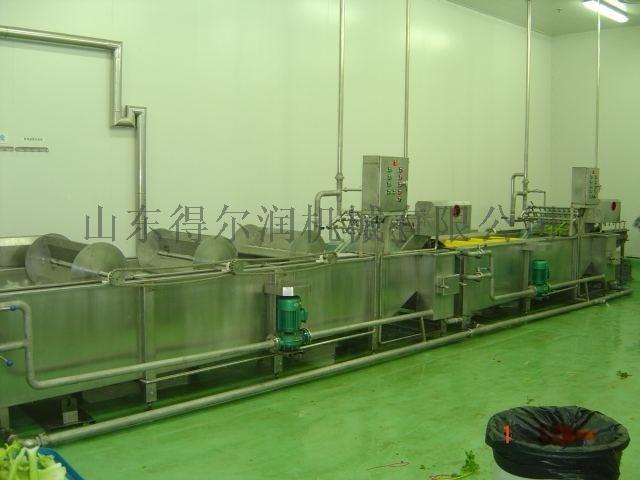 安丘草莓清洗机 连续草莓气泡清洗设备 果蔬清洗线770538732