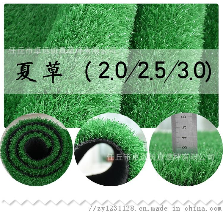 河北足球場建設、人造草坪鋪裝73595032