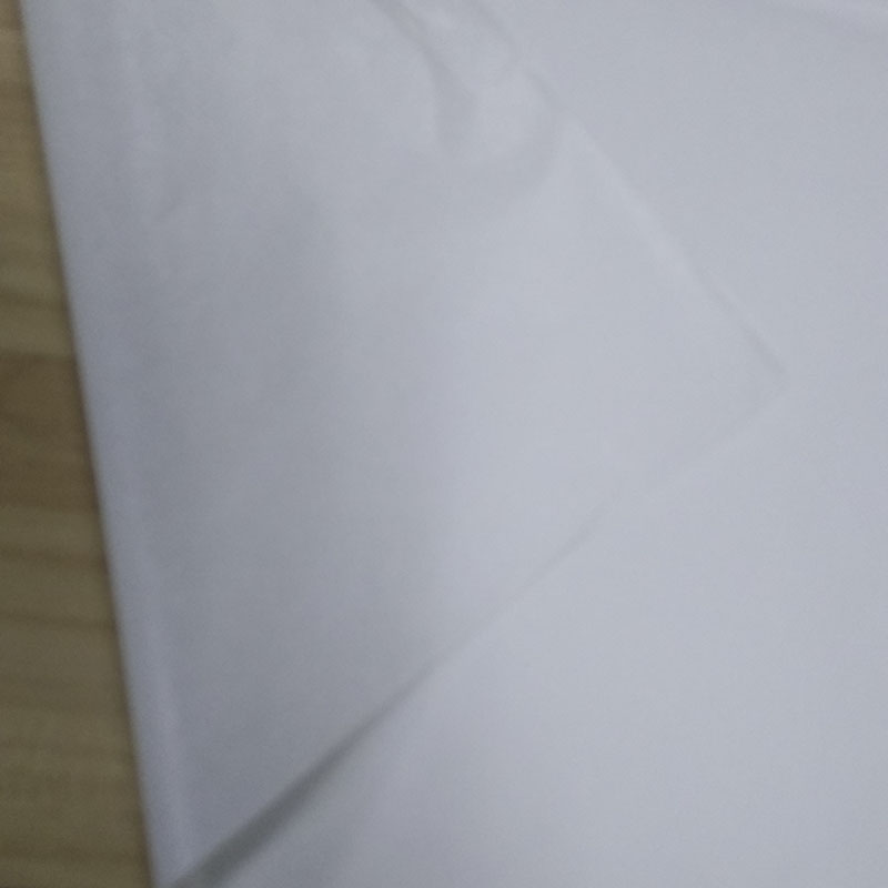 垫盘纸.jpg