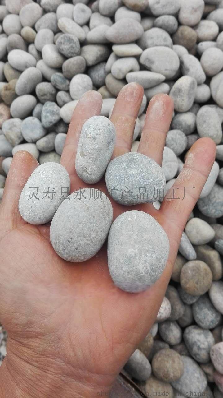 北京2-3厘米抛光白色鹅卵石多少钱一吨737269222