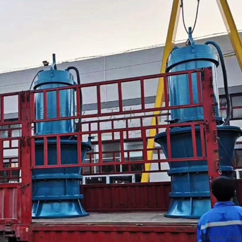 潛水軸流泵2.jpg