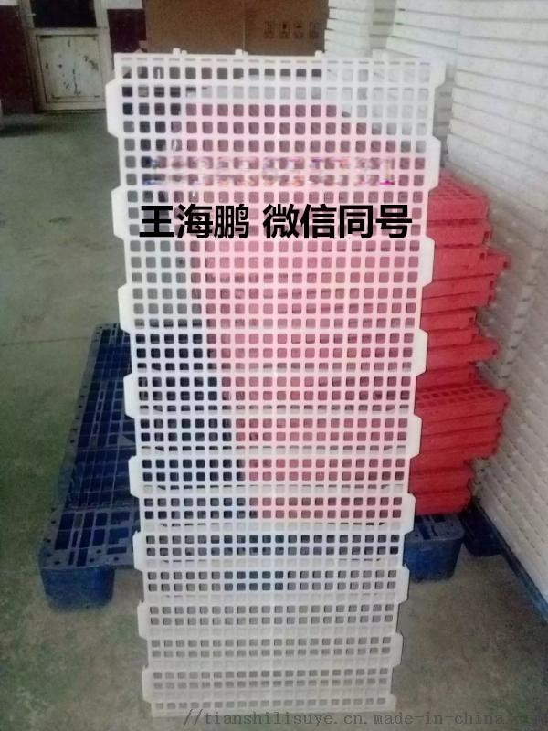 多规格鸡用漏粪板 优质鸡用漏粪板 种鸡舍用路粪板835636012