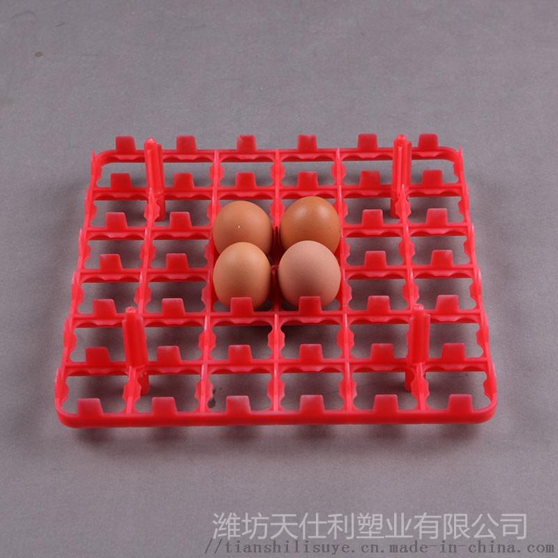 塑料蛋托 36枚鸡蛋托 塑料蛋托生产厂家896914625