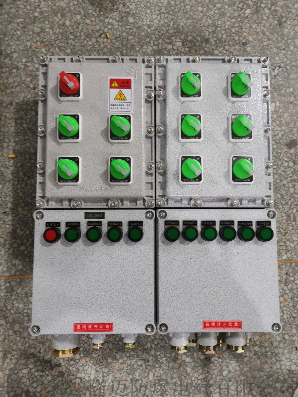 防爆动力配电箱ExdⅡCT4-铝合金(带防雨罩)154110765
