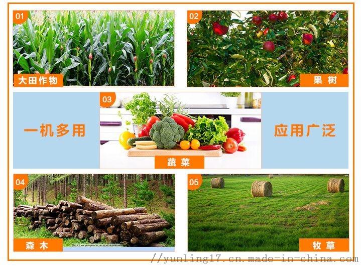 QQ圖片20200804134814.jpg