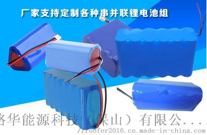 18650电芯厂 钓鱼灯野营灯强光手电锂电池组合63877742