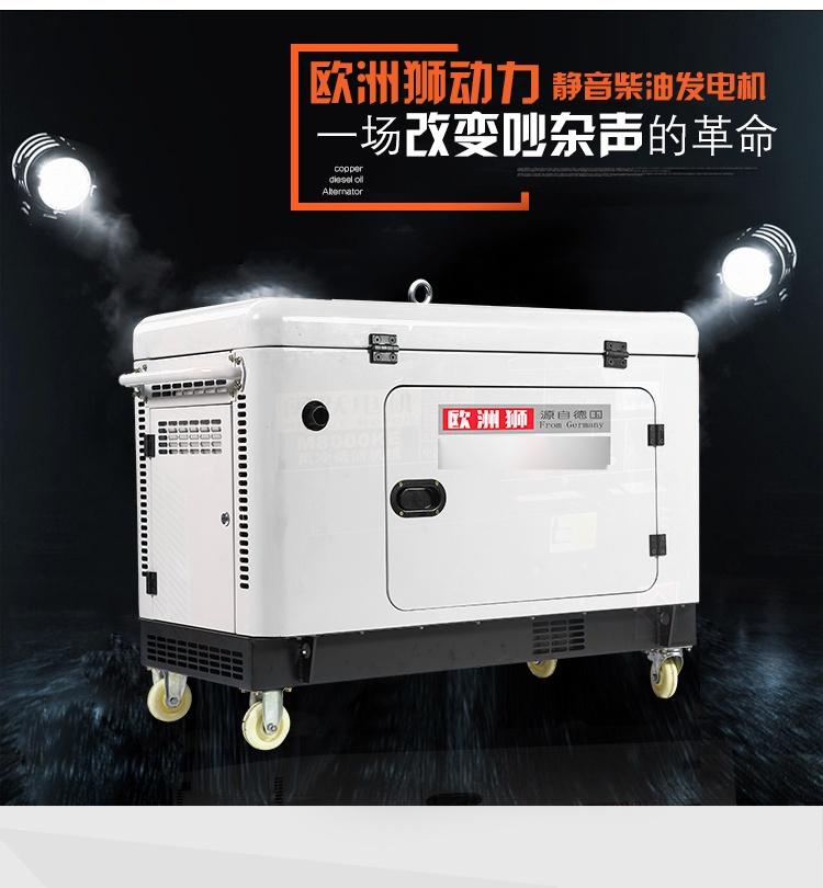 小型靜音柴油 (1).jpg