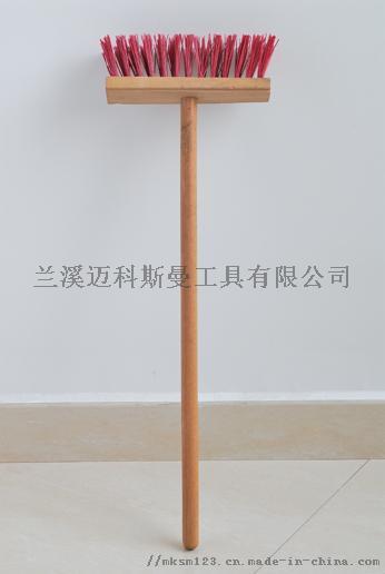 ASC_1817.jpg
