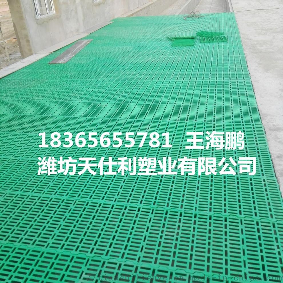 塑料羊床漏粪板 羊床制作 羊用漏粪床846853392