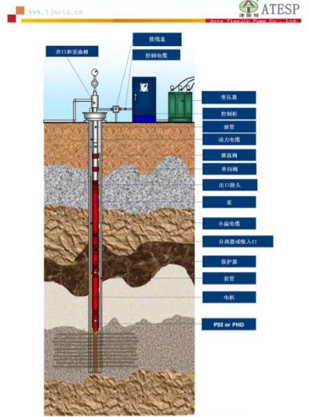 QYDB千米地热油井提升泵_高扬程潜油电泵带保护器潜油电机成套供应53722465