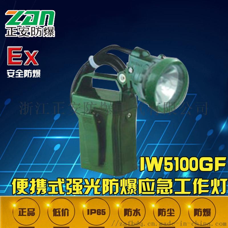 IW5100GF.jpg