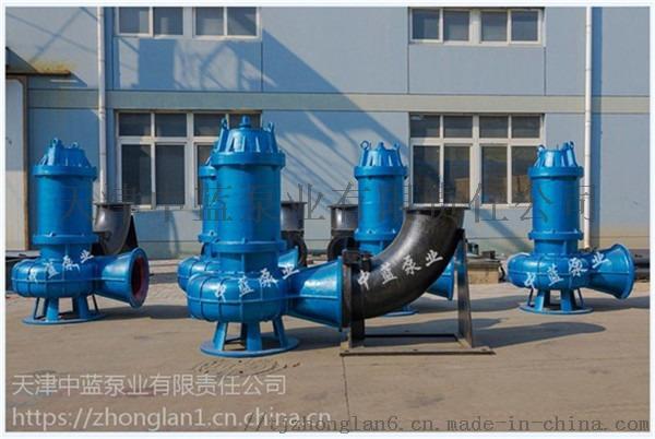 潜水污水泵图01_副本1.jpg