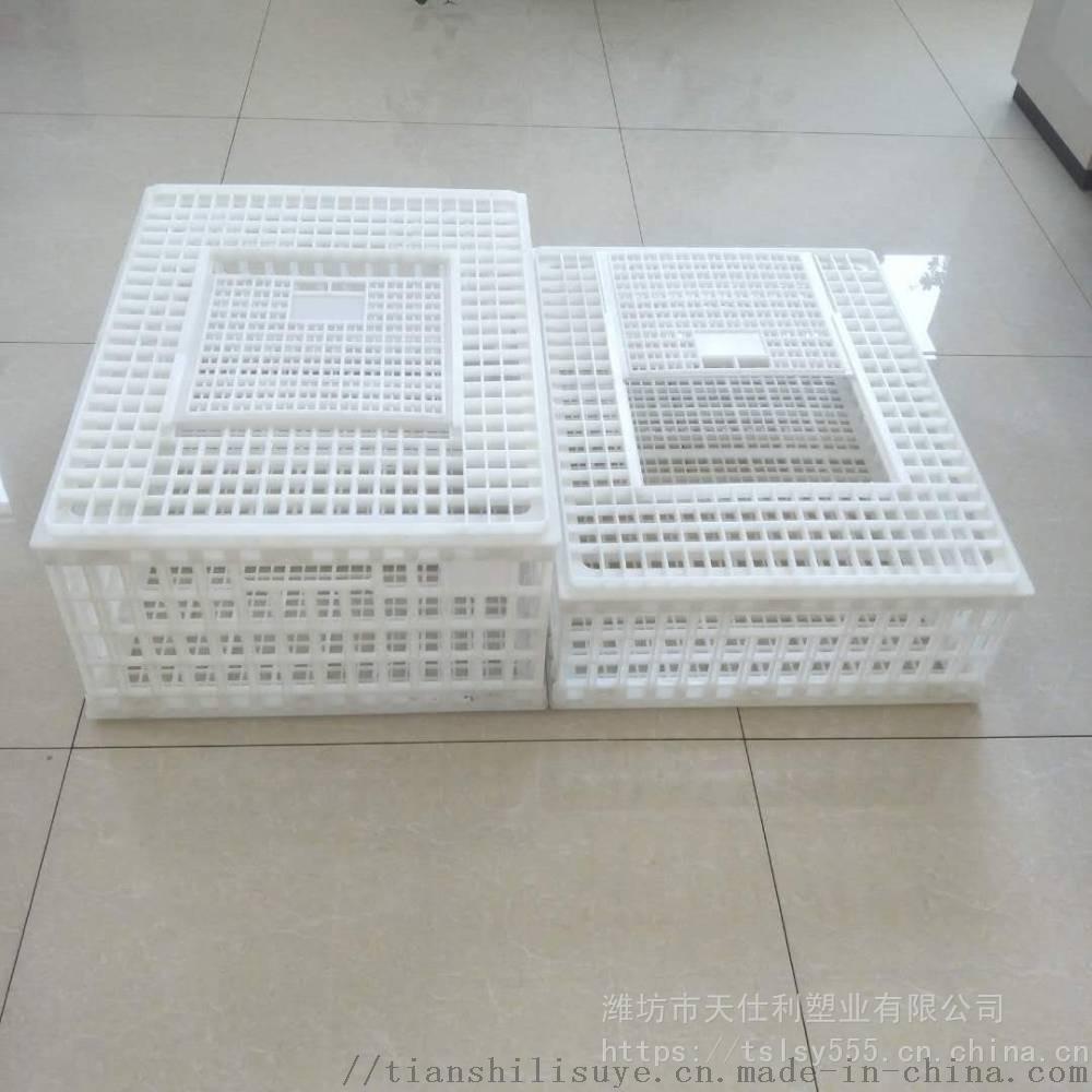 抗摔塑料成鸡周转箱 鸡鸭鹅周转箱 大鸡周转笼子850800402