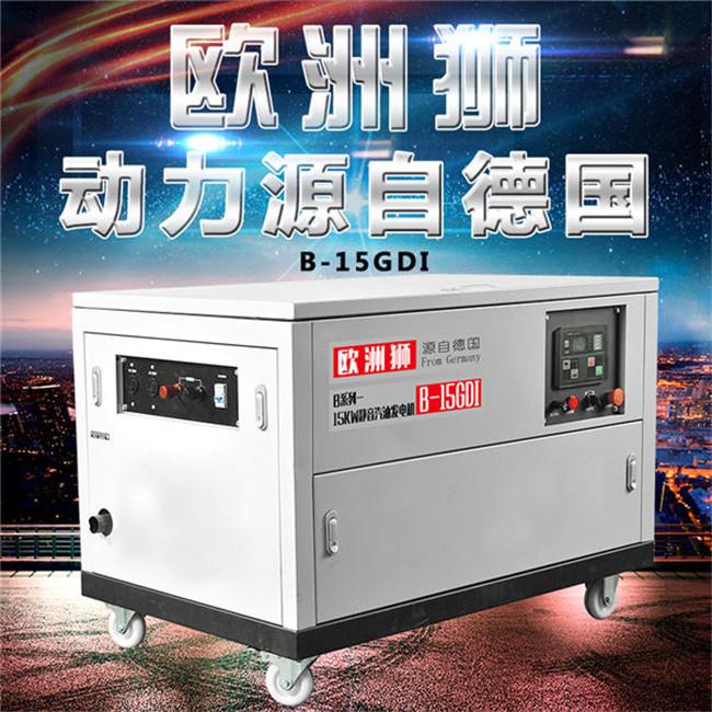 15kw汽油发电机 (2).jpg