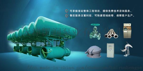 600QZ雪橇式潜水轴流泵选凯润泵业94639445