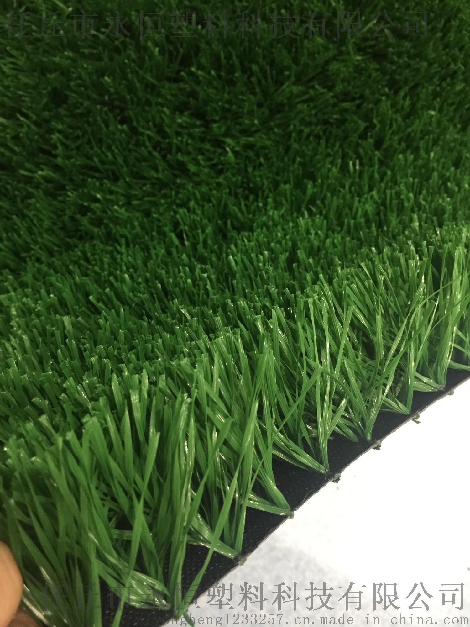 河北人造草坪厂家 塑料草坪厂家直销 仿真草皮763713952